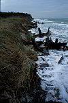 Küstenabbruch bei Darßer Ort
