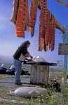 Inuitfrau schlachtet Lachse