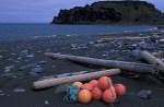 Treibholz und Fischereimüll