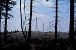 Windenergie und Waldsterben 1991