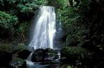 Wasserfall auf Neuseeland