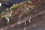 Eiszapfen an vulkanischen Aschenlagen