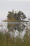Kleine Insel bei Kalmar