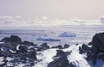 Eisberge vor Oates Küste