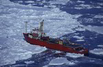 Eisbrecher Polar Queen an Eisscholle