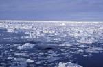 Packeis in Antarktis