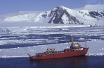 icebreaker Polar Queen off Oates Coast