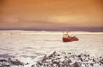 Eisbrecher Polar Queen im Packeis