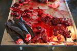 Fredrikshåb seal meat