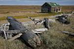 Herschel Island Hütte und Treibholz