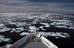 Schiff im arktischen Treibeis