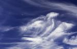Wolkenvogel mit Mond