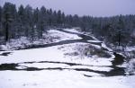 winter near Ivalo