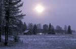 winter sun over finnish taiga