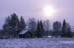 Wintersonne über finnischer Taiga