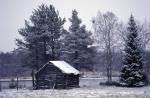hut at river