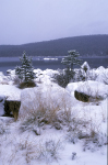 Winter am Inarijärvi