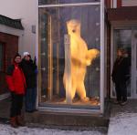 tourists and polar bear ( thalarctos maritimus )
