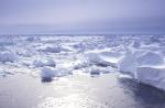 antarktisches Treibeis