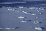 iceberg fleet