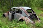Volkswagen im wald