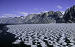 summer ice in east Greenland