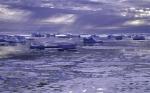Eisbergflotte vor Grönland