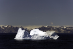 iceberg off east Greenland