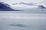 glacier landscape on Svalbard