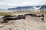 alte Waltrankocherei auf Spitzbergen