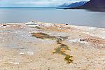 warme Quelle auf Spitzbergen