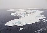 drift ice in fog