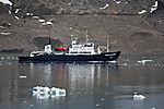 Expeditionsschiff Polar Pioneer auf Spitzbergen