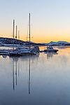 arctic dawn