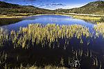 arctic autumn at lake
