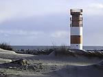 Kegelrobbe und Naturfotografen auf Helgoland, Halichoerus prypus