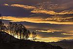arctic dawn and cloud