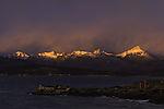 arctic morning