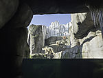 Polar Bears in zoo in Hamburg
