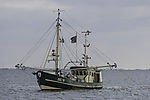 fishing boat in German tidal sea
