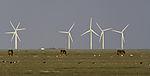wind mills on island Pellworm