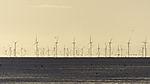 windmills at tidal sea