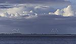wind mills on island Pellwoprm