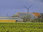 renewable energy wind solar and bio