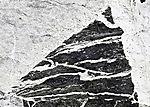 Amphibolite und Anorthosit