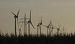 windpark in morning light