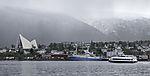 ehemaliges norwegisches Forschungsschiff Lance