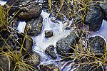mineralische Haut auf Pfütze