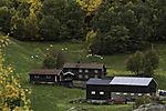 mountain farm with sheep