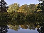 Herbstspiegelung an der Alster